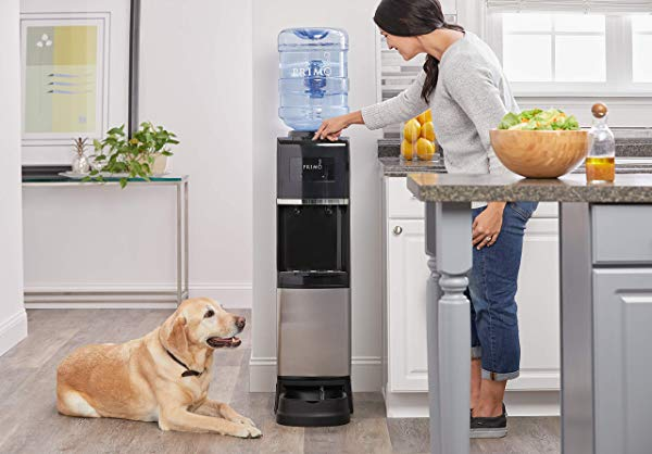 Primo Water Cooler Dispenser + Pet Station