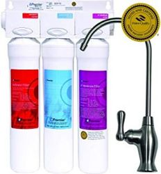 Watts water filter