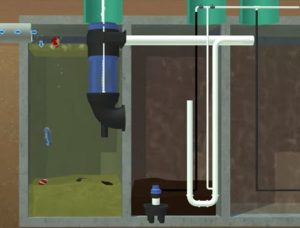 Aeration system for water purification