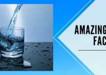 40 Amazing Water Facts and Importance in daily life