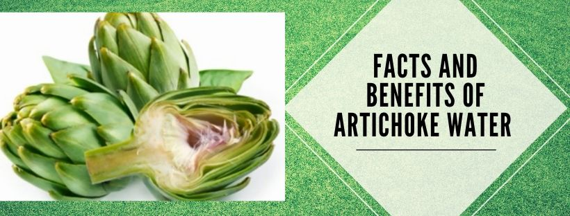 benefits of artichoke water and important facts about it