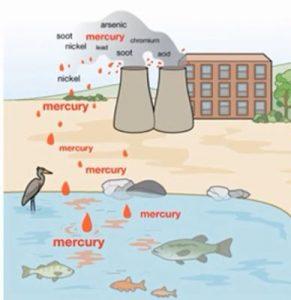 mercury in water resources