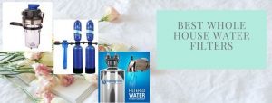 Top 8 best whole house water purifiers