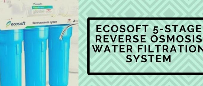 Ecosoft RO Water purifier