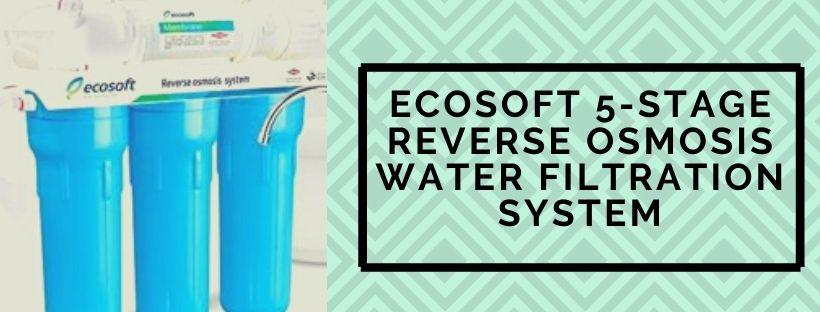Ecosoft RO Water purifier