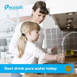 Ecosoft countertop water purifier with 1500 gallons capacity