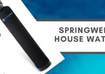SpringWell Whole House Water Filter System Review